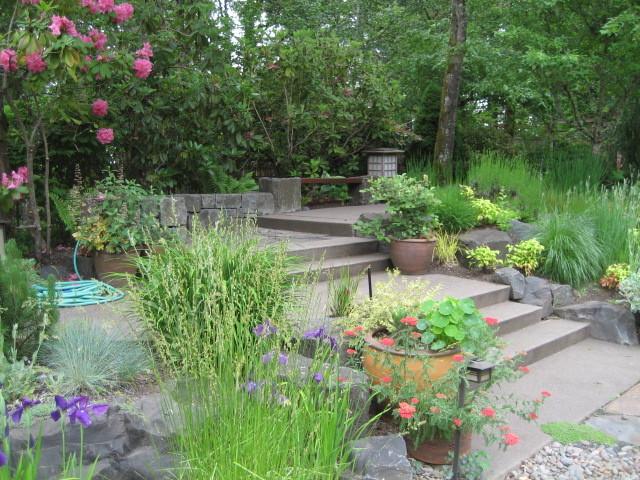 Hillside Retreat - A Residence contemporary-landscape
