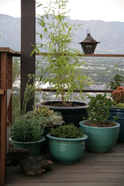 Hilltop Retreat contemporary-landscape