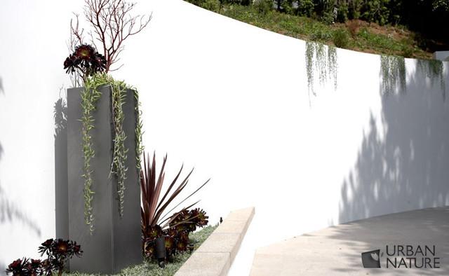 Hilltop Retreat, West Hollywood, CA contemporary-landscape
