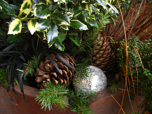 Holiday Container Gardens
