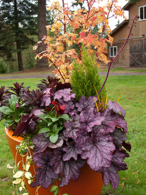 Holiday container gardens landscape seattle by le jardinet - Gardening in fall ...