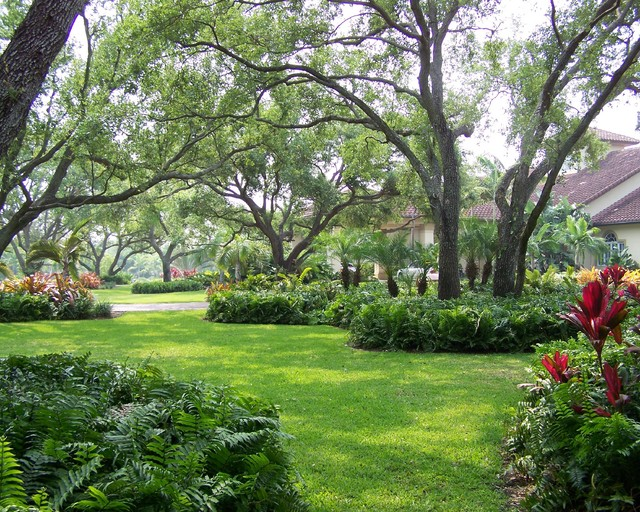 Landscaping Under Elm Trees : Landscape miami by orlando comas architect