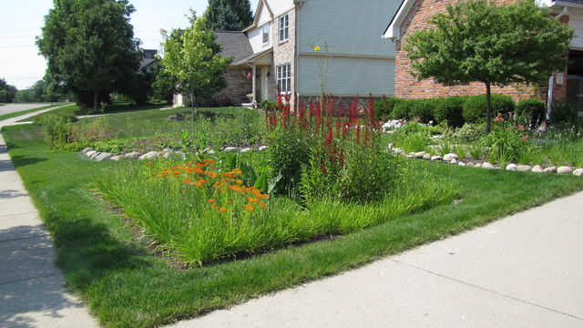 This is an example of a full sun front yard landscaping in Detroit.