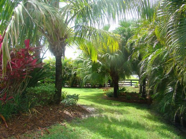 Horse farm Wellington tropical-landscape