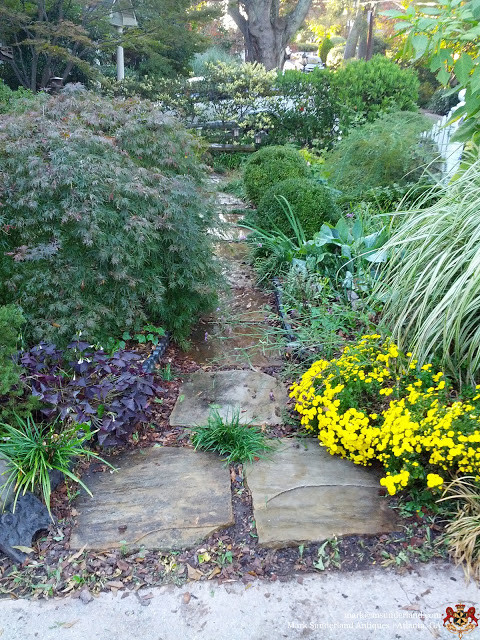 How does Your Garden Grow? Here's Mine....... traditional-landscape