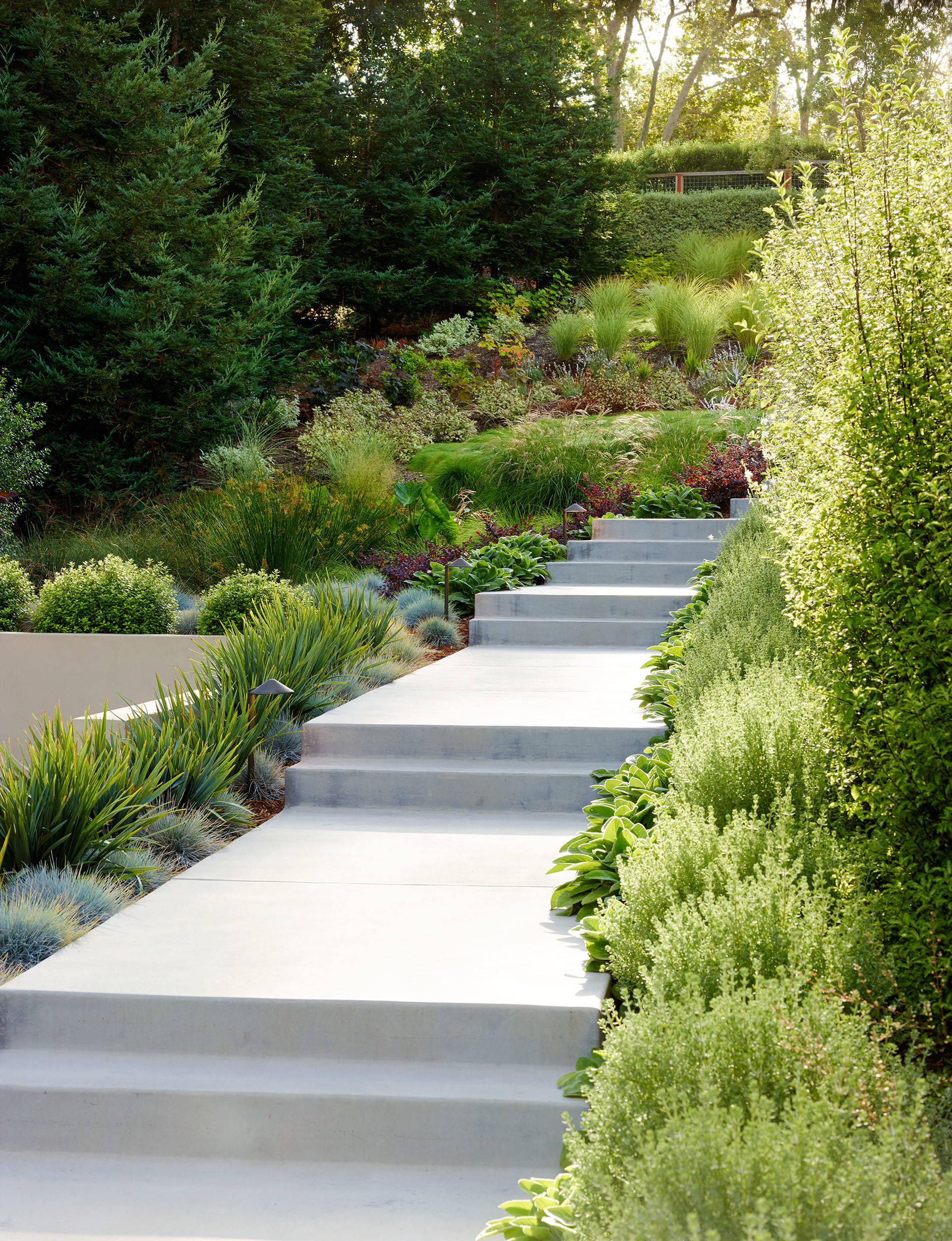 75 Beautiful Contemporary Front Yard Landscaping Pictures Ideas December 2020 Houzz