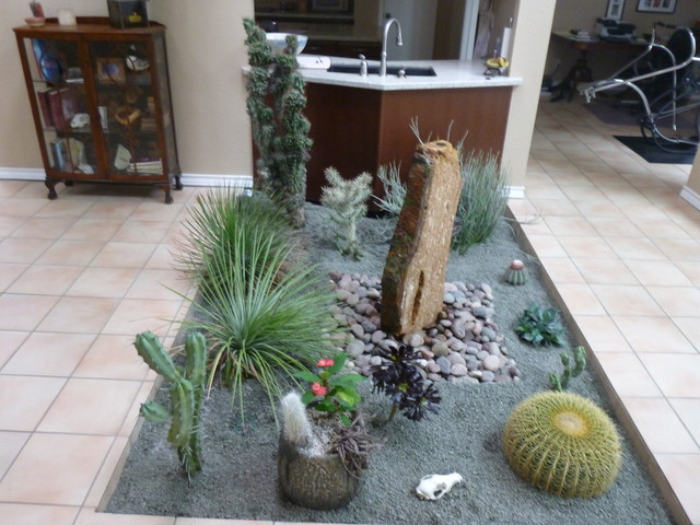 Indoor Cactus Atrium Mediterranean Garden Houston by