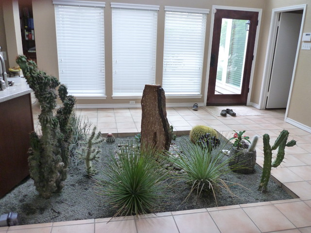 Indoor Cactus Atrium Mediterranean Garden Houston by