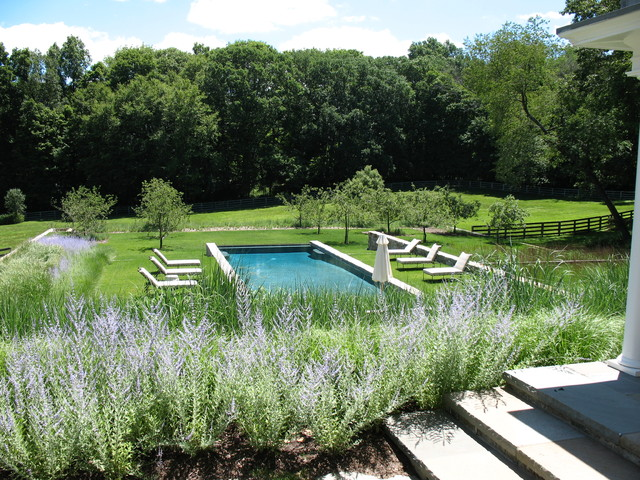 Infinity edge pool stone walls perennials and lawn for Pool garden edging