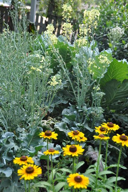 Informal garden in Spring Branch eclectic-landscape