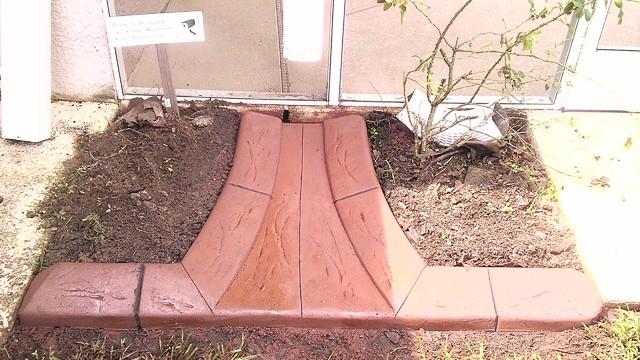 Decorative Yard Drainage : Integrated splash blocks into curb to allow water drainage