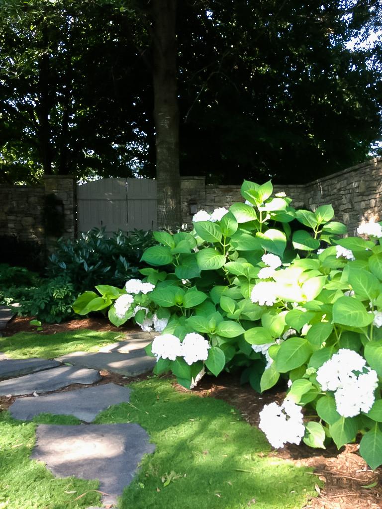 Interior Garden Area