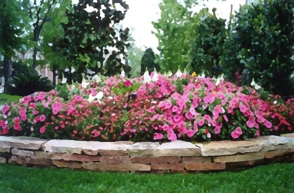 Design ideas for a traditional landscaping in Houston.