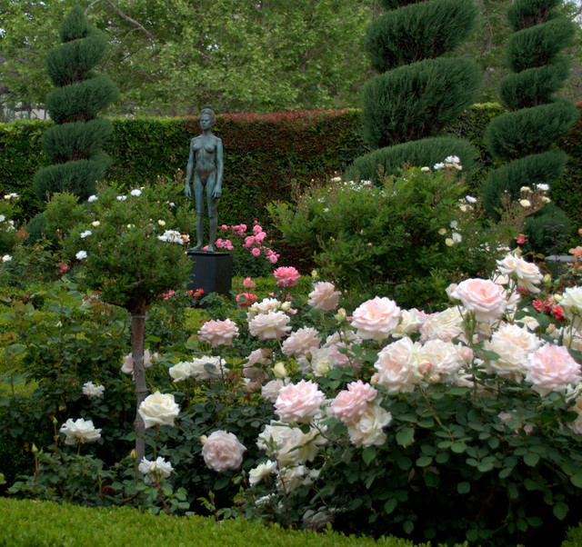 Italian Renaissance Rose Garden - Traditional - Garden - Los Angeles ...