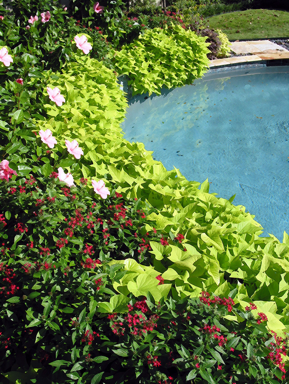 Italian Renaissance Style Home and Gardens