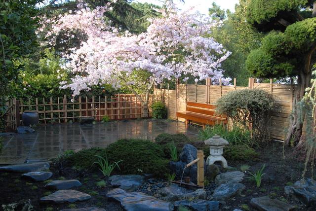 Asian backyard garden in San Francisco.