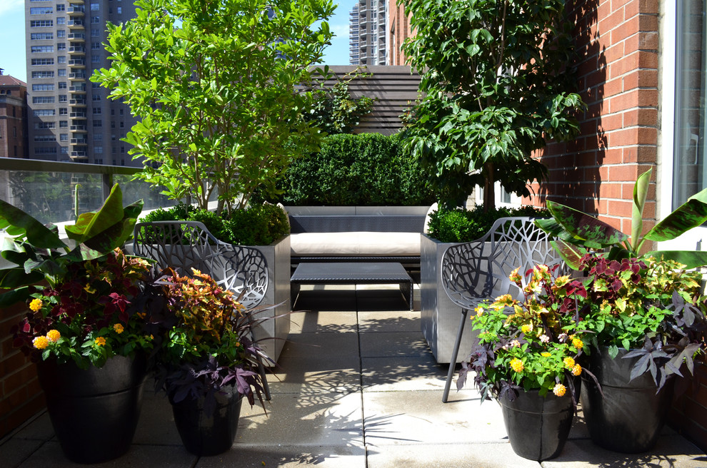 Design ideas for a small traditional landscaping in New York.