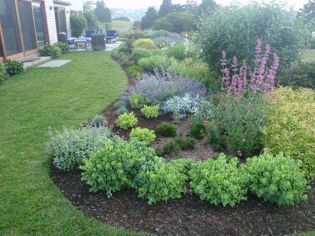Jennifer Jamgochian/ Multiflora traditional-landscape