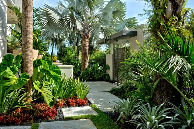 Jones Residence Tropical Landscape Miami By Craig