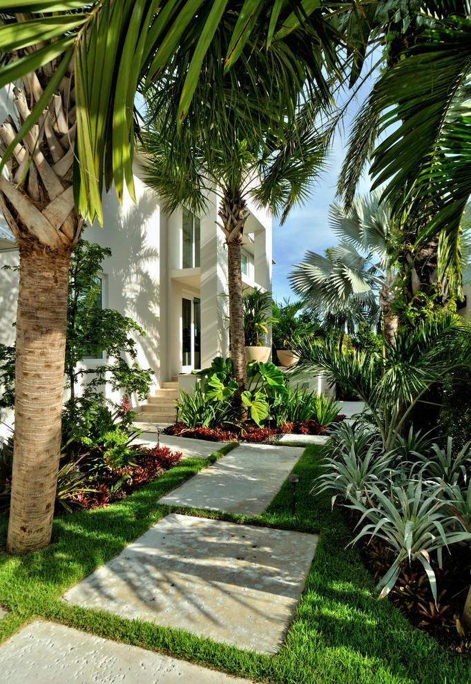 Photo of a tropical partial sun landscaping in Miami.
