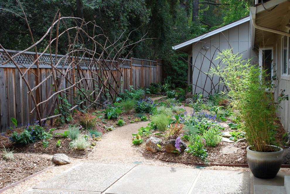 Inspiration for an eclectic vegetable garden landscape in San Francisco.