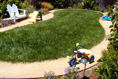 Kid friendly gardens landscape san francisco by for Child friendly garden designs