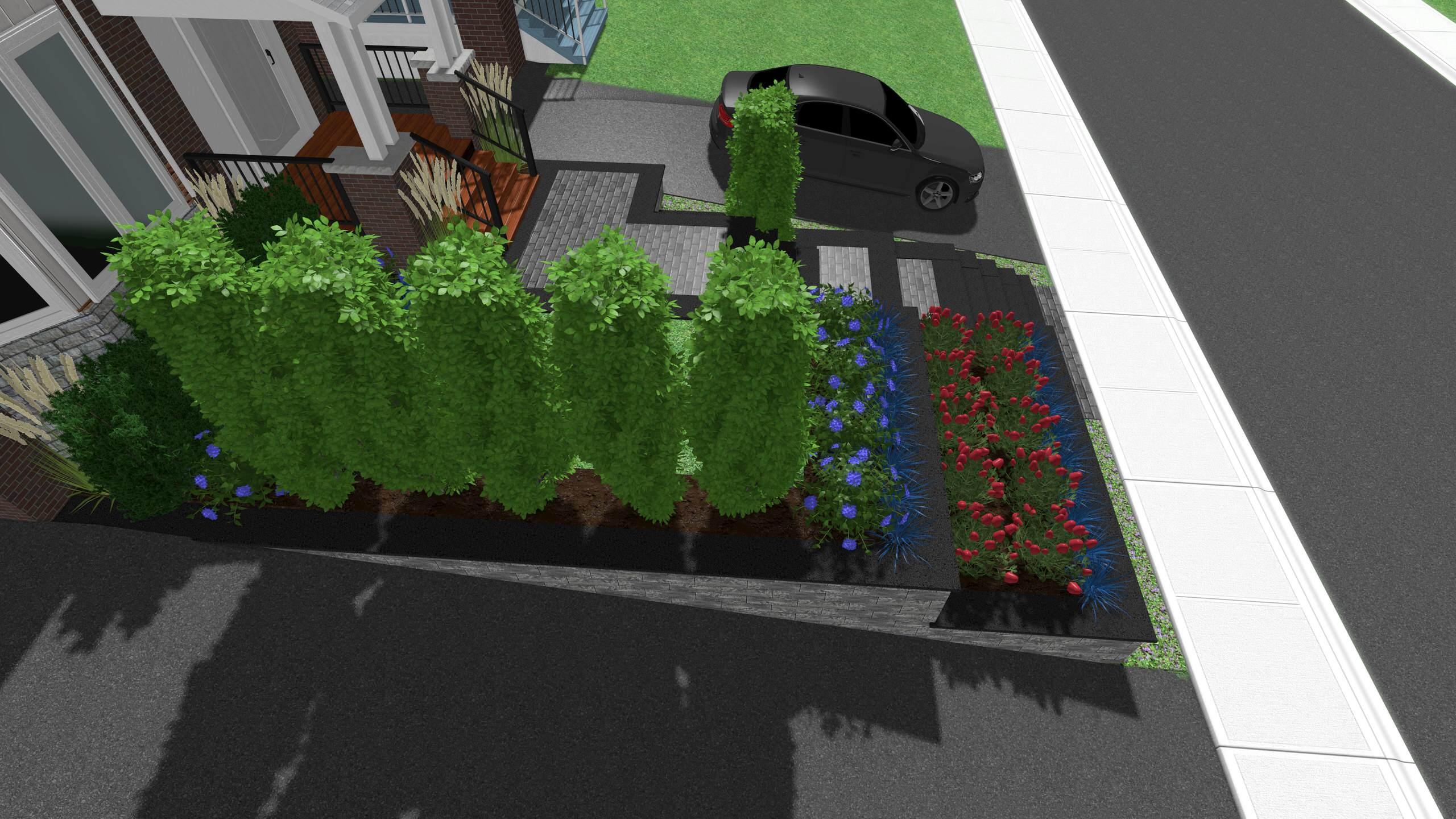 King City Front Yard