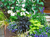 9 Blooming Container Gardens That Welcome Butterflies and Bees (14 photos)