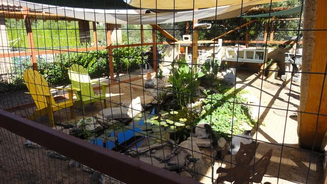 Kitty Enclosure eclectic-landscape