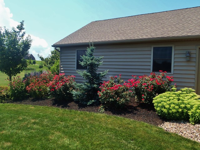 Double Knockout Roses Landscaping Ideas