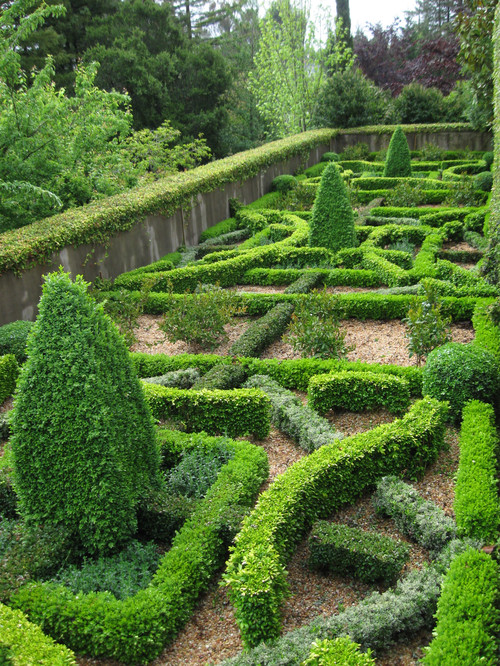 beautiful shrub architecture