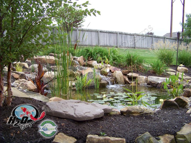 Koi pond backyard pond small pond ideas for your for Small pond landscaping ideas