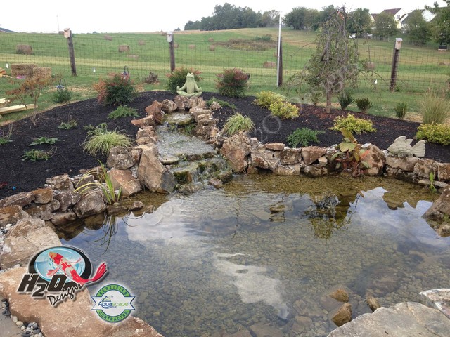 Koi pond backyard pond small pond ideas for your for Large pond ideas