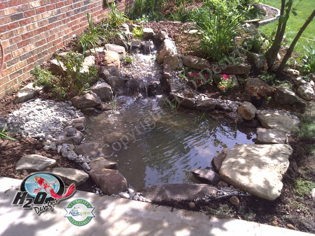 Koi pond backyard pond small pond ideas for your for Small outside fish ponds