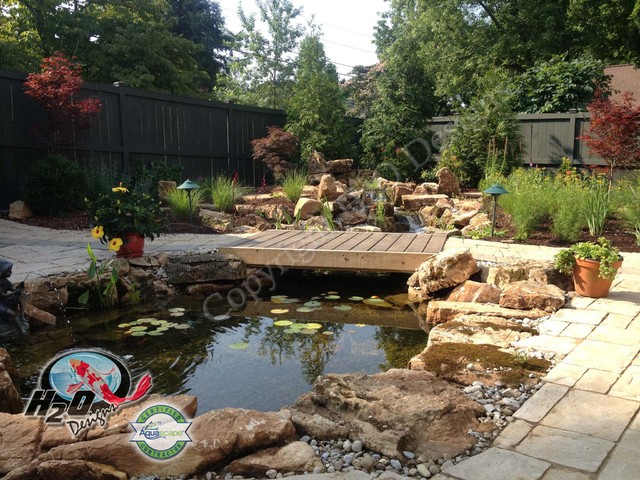 Koi pond backyard pond small pond ideas for your for Backyard fish pond