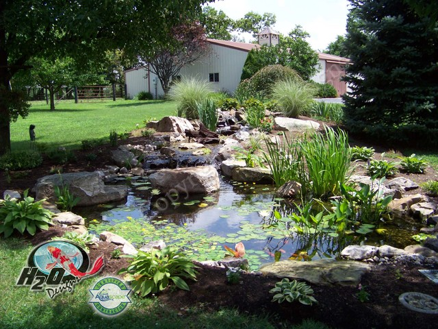Koi pond backyard pond small pond ideas for your for Pond yard design