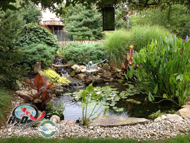 Koi pond backyard pond small pond ideas for your for Koi pond plant ideas