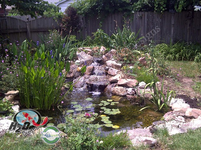 KOI Pond, Backyard Pond & Small Pond Ideas for your Kentucky Landscape