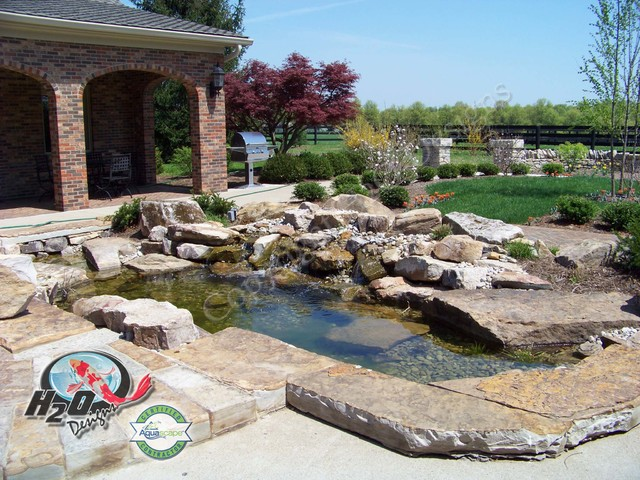 Koi pond backyard pond small pond ideas for your for Koi fish pond design in malaysia