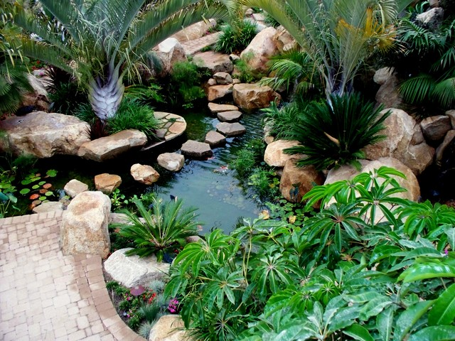 Koi pond tropical landscape san diego by david for Koi for sale san diego