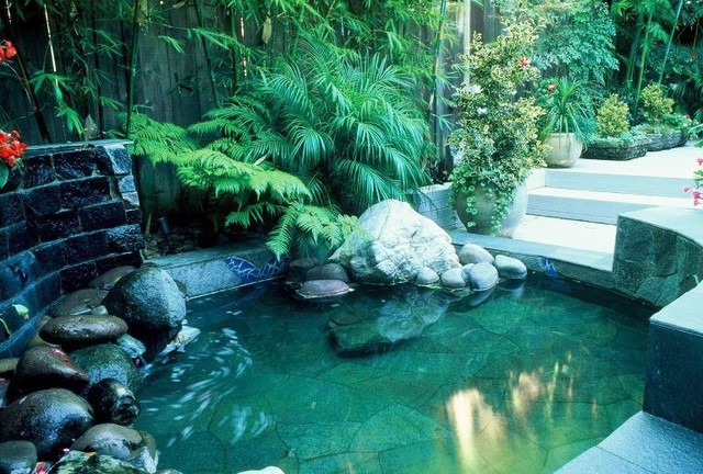 Koi pond asian landscape other metro by modern zen for Garden pool zen area