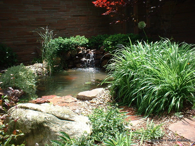 Koi Ponds And Water Gardens Rustic Landscape Omaha