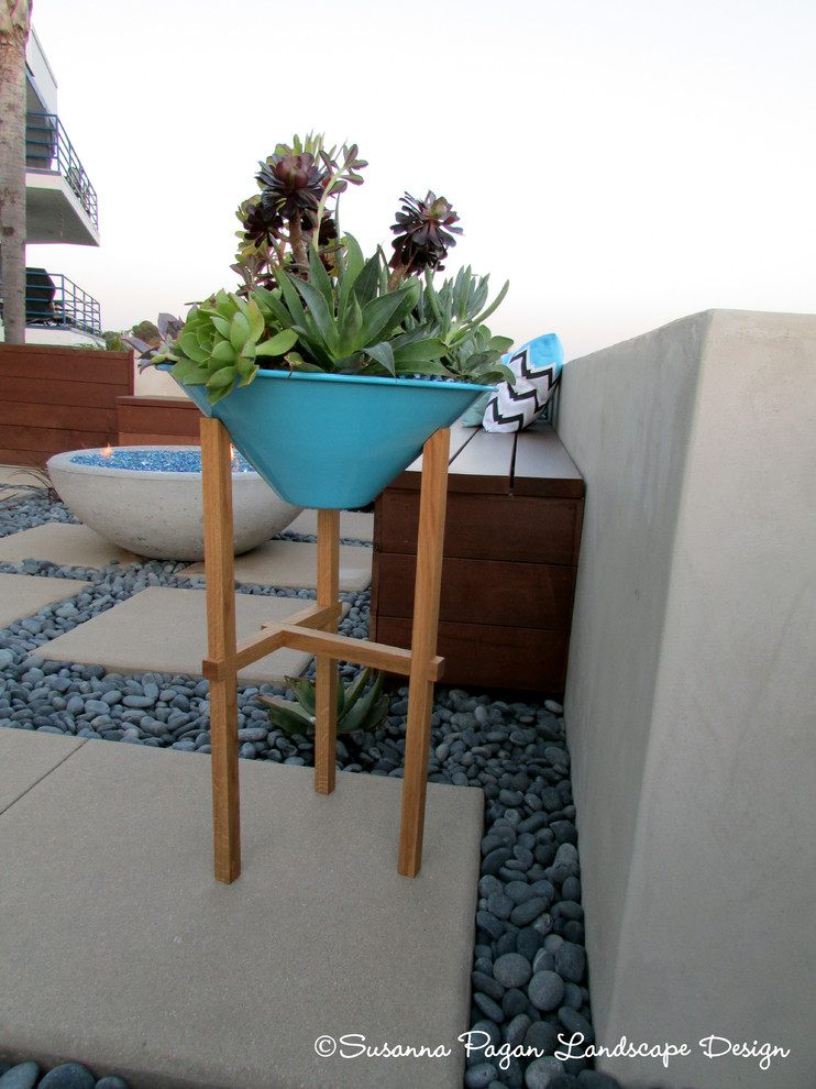 This is an example of a modern landscaping in San Diego.