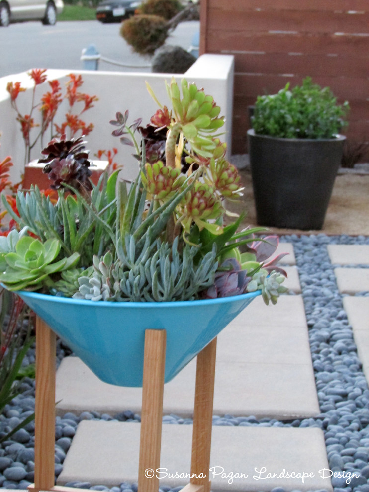 Design ideas for a modern landscaping in San Diego.