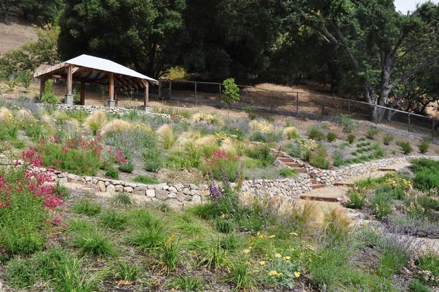 Solve 3 Common Landscape Problems With More Plants