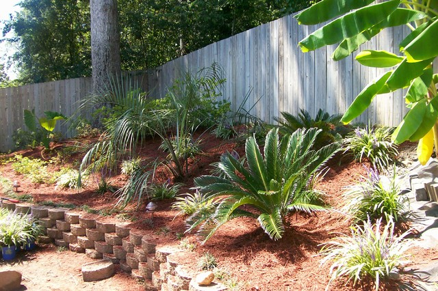 lake olmstead backyard tropical landscape other