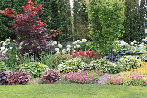 Would the plants in front be suitable for shady area what for Plants suitable for japanese garden