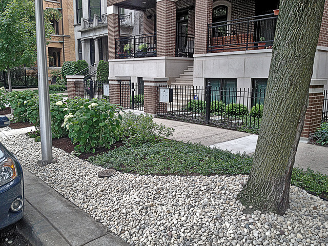 Lakeview front yard parkway contemporary landscape for Landscape design chicago