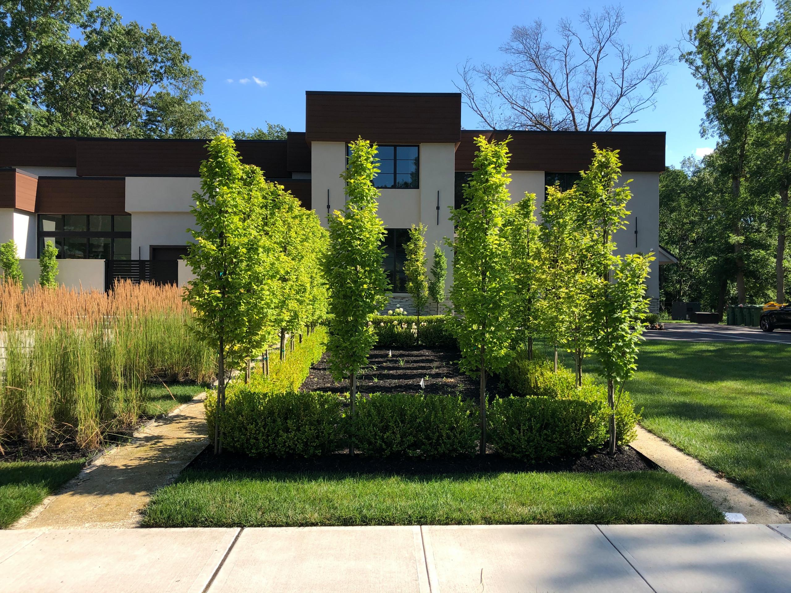 Lakewood modern