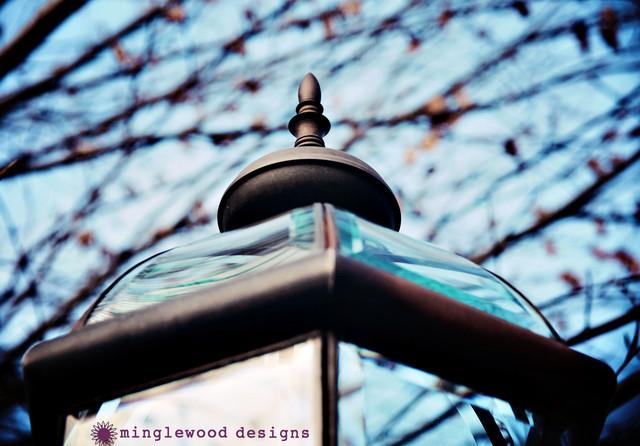 Lamp Post eclectic-landscape